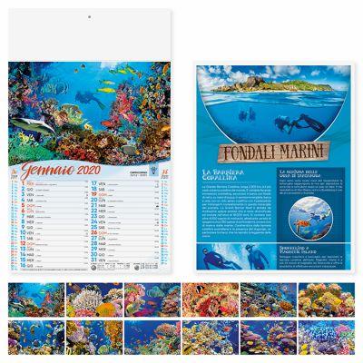 Calendario illustrato fonadali marini del mondo 12 fogli mensile carta patinata